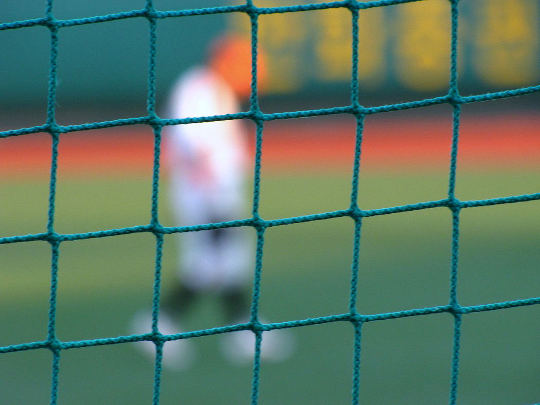 Netting Barriers