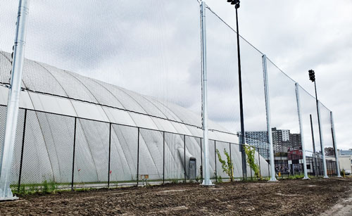 Ottawa-University-Lees-Ave.-Netting-Barrier-2