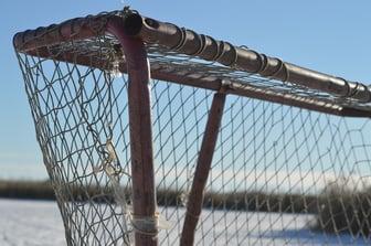 outdoor-hockey-rink-net.jpg
