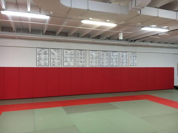 wall-padding-judo-aikibudo.jpg